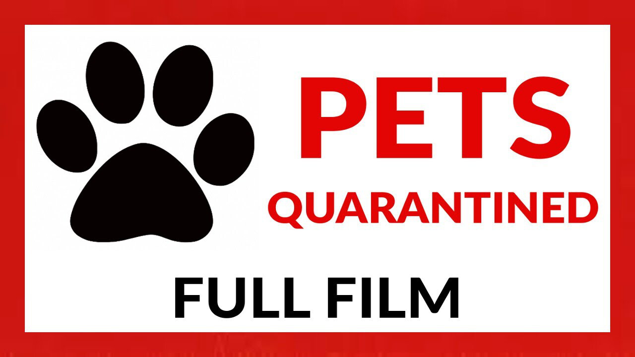 PETS - quarantined